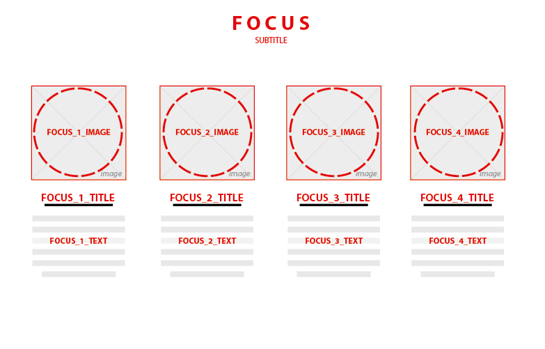 focus section